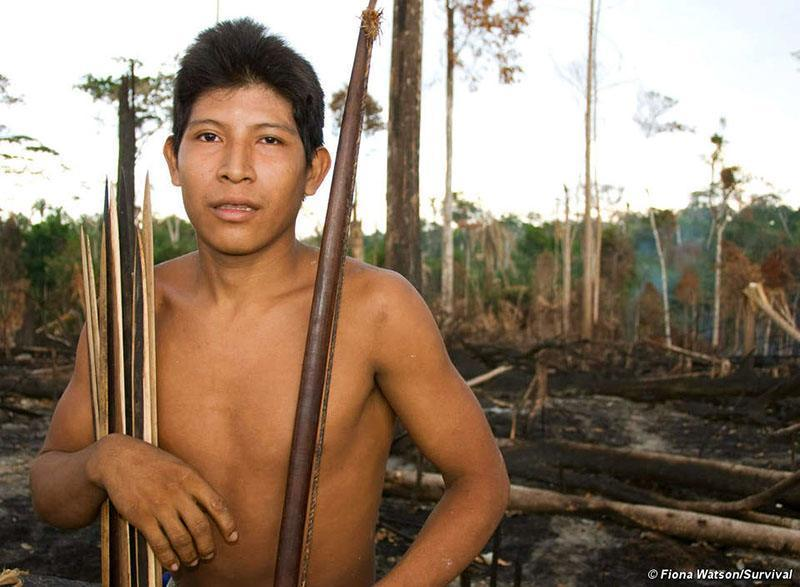 Most Threatened Tribe Burned Forest
