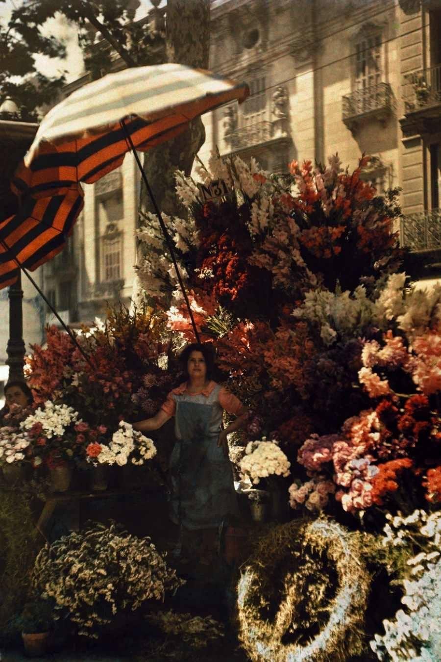 Barcelona Flowers