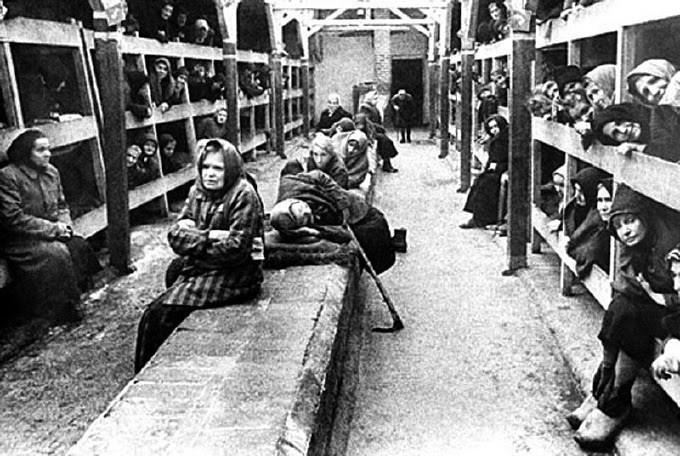 Women's concentration camp beds