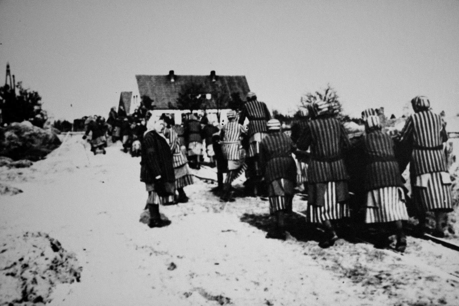 Women's concentration camp prisoners under forced labor