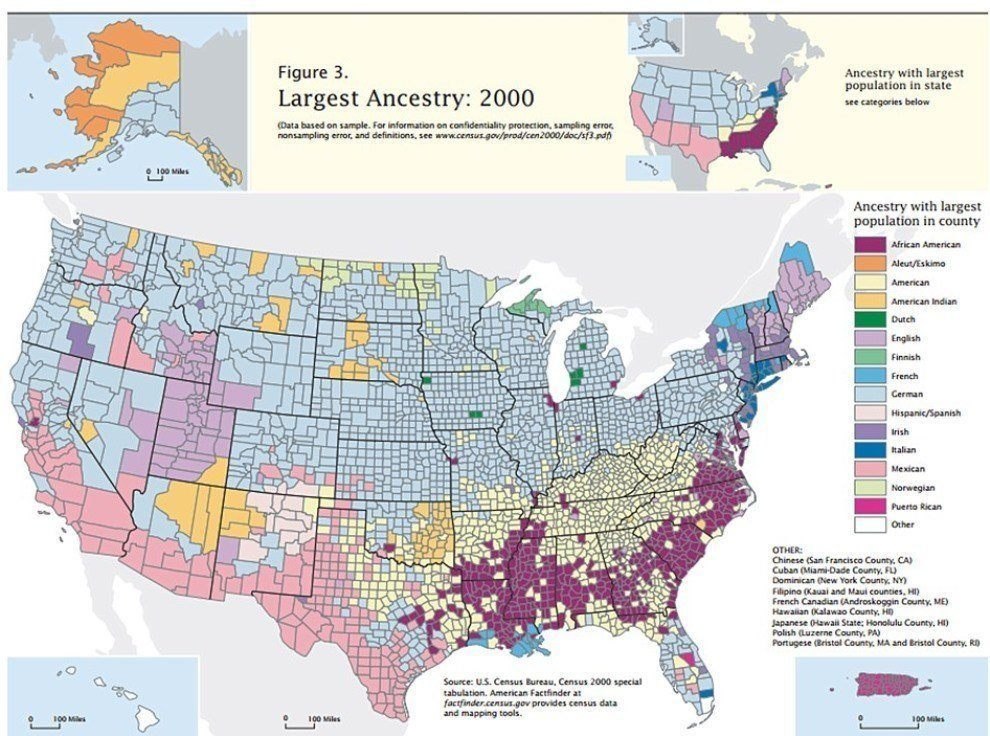 us economic activity map ancestry in the united states
