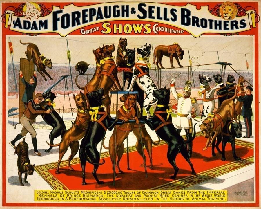 classic circus forepaugh sells