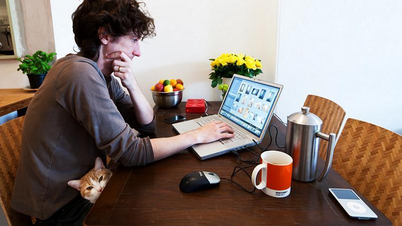 Freelancers Life Lady Cat