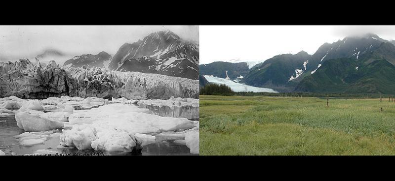 Global Warming Pendersen Glacier