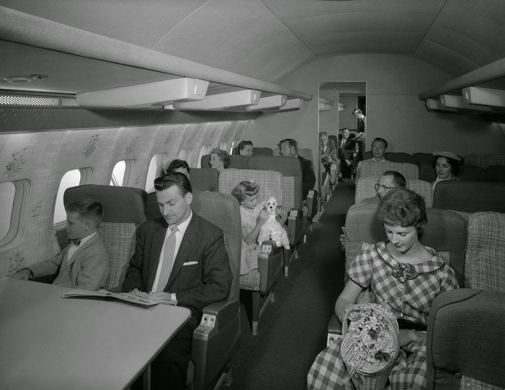 Golden Age Air Travel Puppy