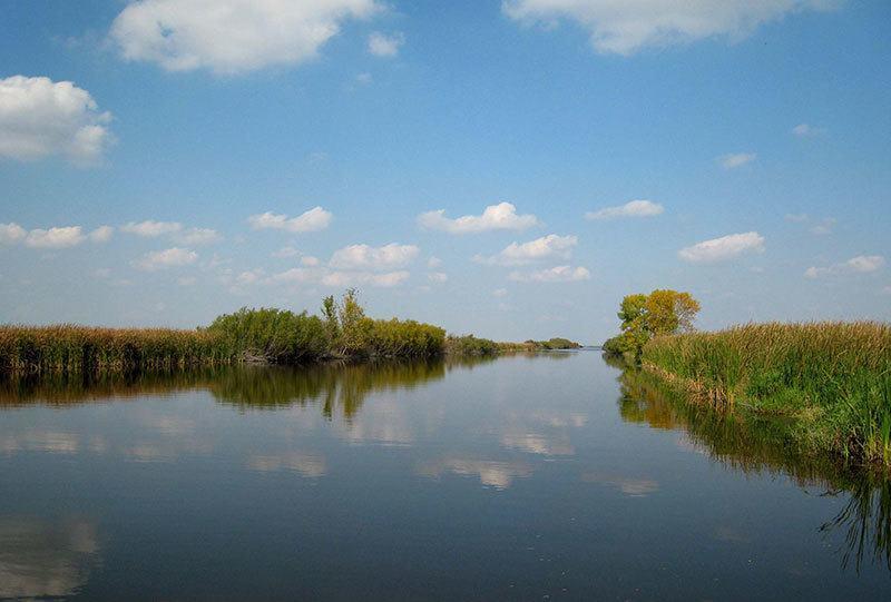 Horicon Freshwater Marsh