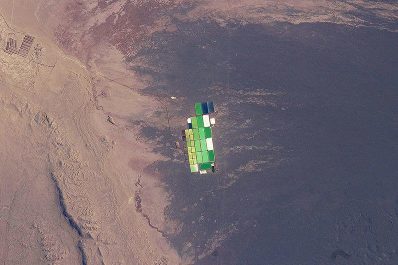 Evaporation Ponds In Atacama Desert