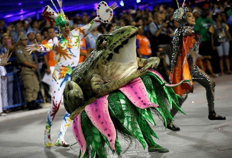 Carnival 2015 in Brazil