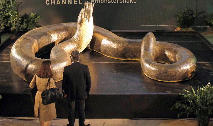Titanoboa Huge Snake People