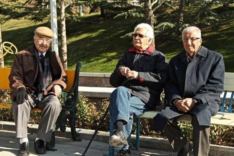 Everyday iran park bench men