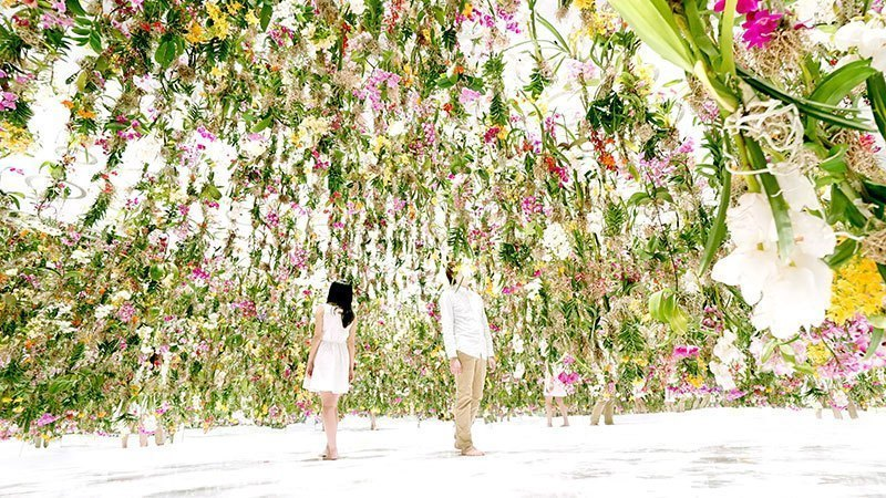 Immersive Floating Flower Garden