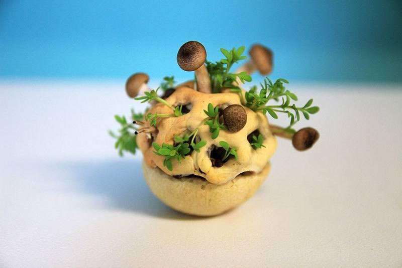 Futuristic Food Chloe Rutzerveld