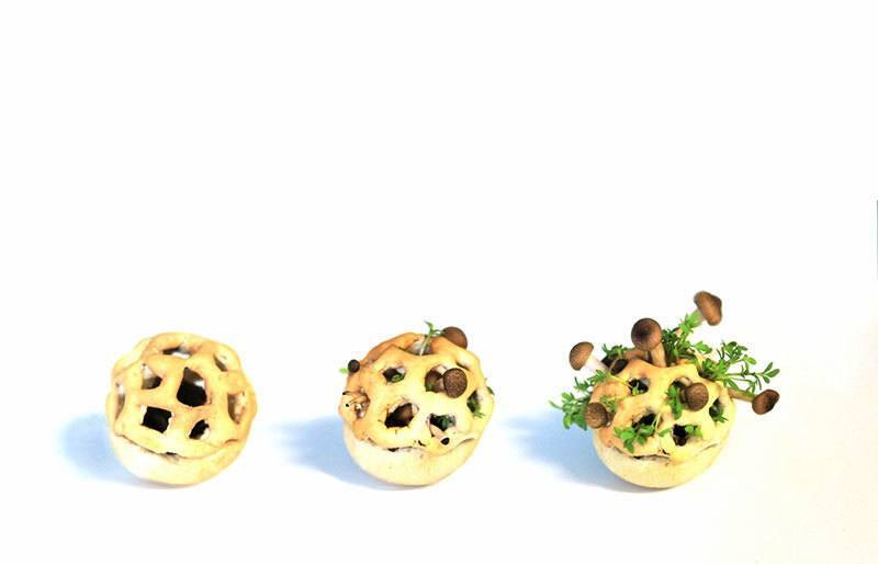Growth Process of 3D Food