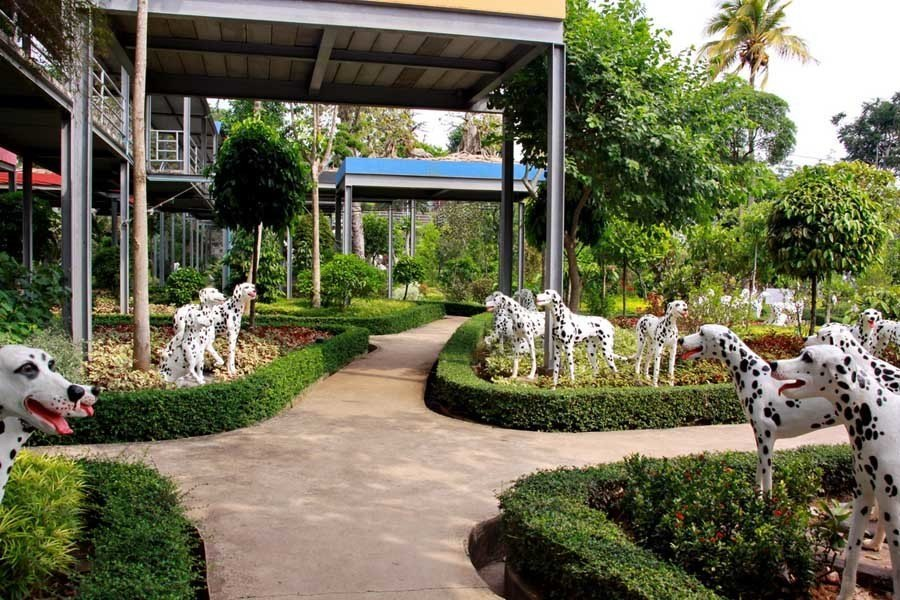 nong nooch dalmation paths