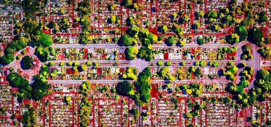 geometric earth broccoli trees