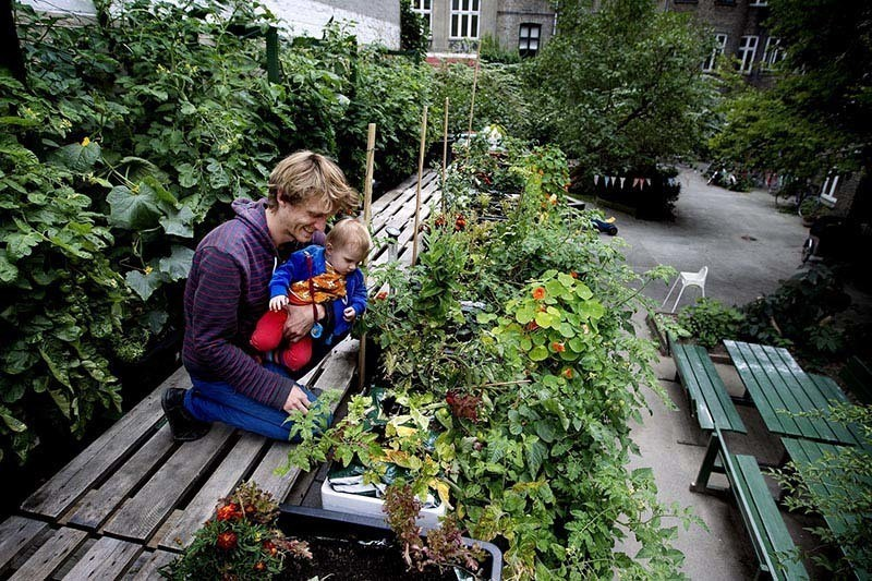 Greenest City Urban Farming