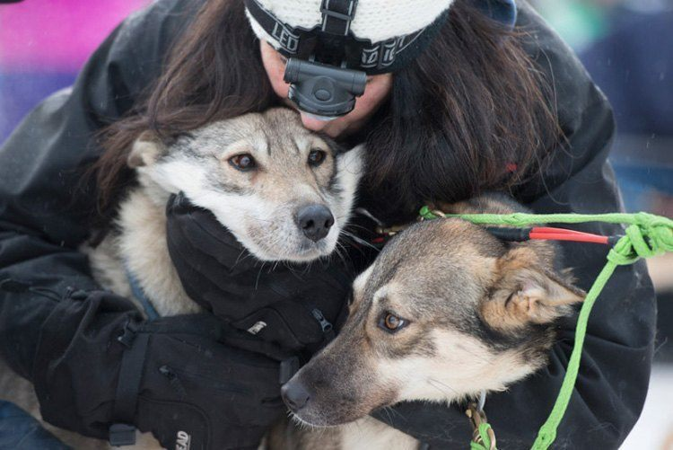 iditarod race big hugs