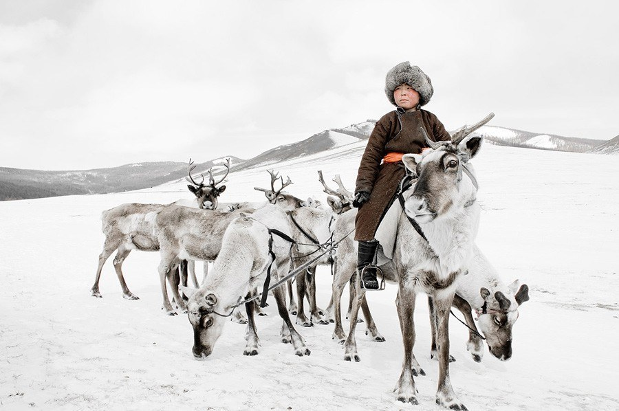 reindeer people frozen tundra