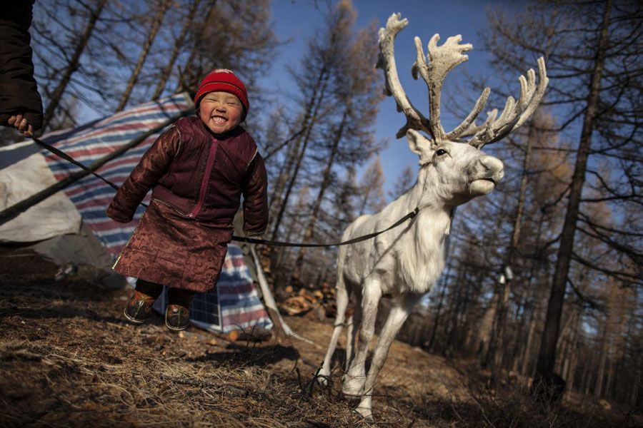 reindeer people huge smile