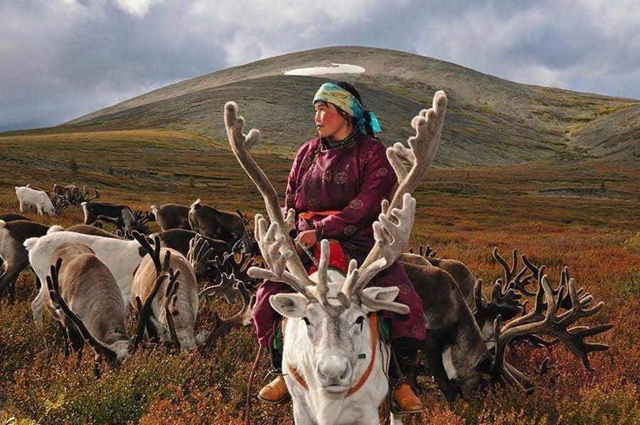 reindeer people rolling hills