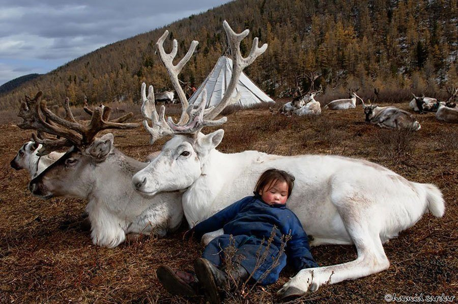 reindeer people sleeping child