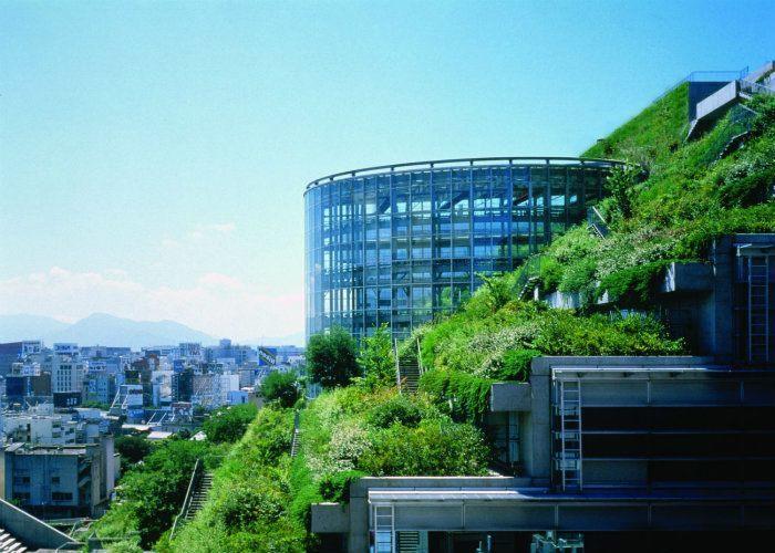 Japan Roof Garden