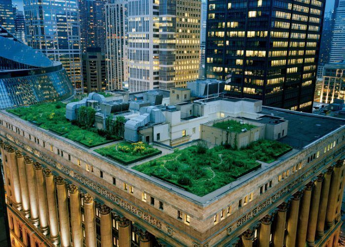 Rooftop Gardens Chicago City Hall