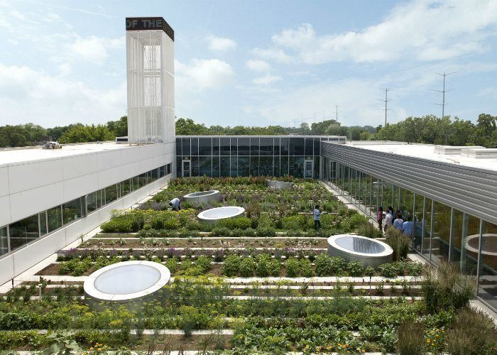 Gary Comer Youth Center Roof Garden in Chicago