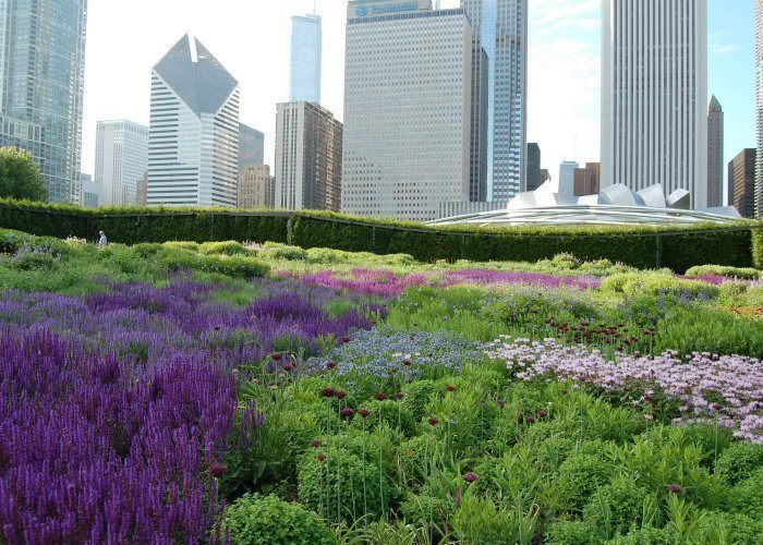 Rooftop Gardens Lurie