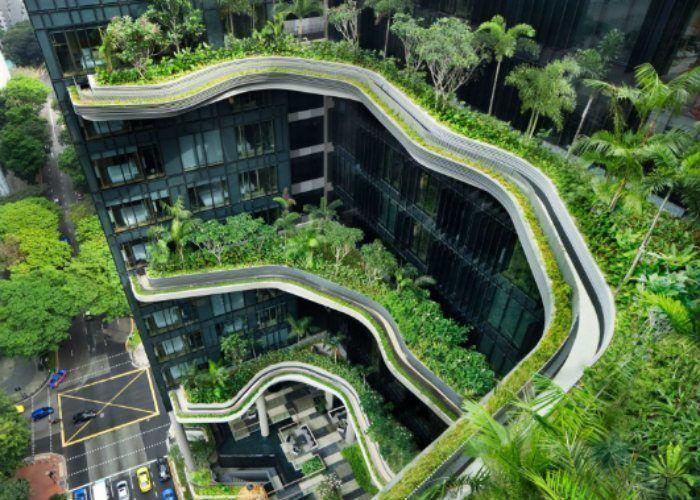 Rooftop Gardens Park Royal