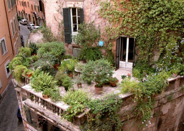 Rooftop Gardens Patio Rome