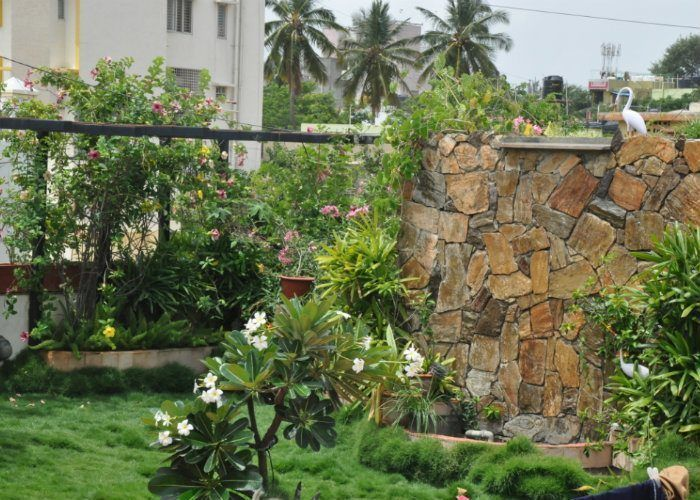 Rooftop Gardens Terrace Bangalore