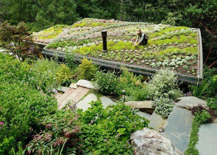 Rooftop Gardens Walkup