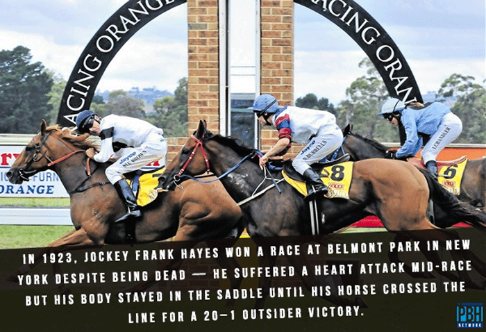 The Dead Jockey