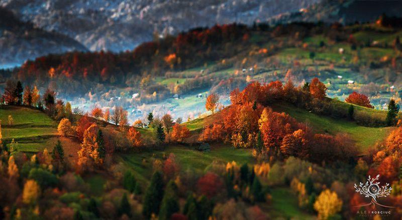 Transylvania Landscapes Foliage