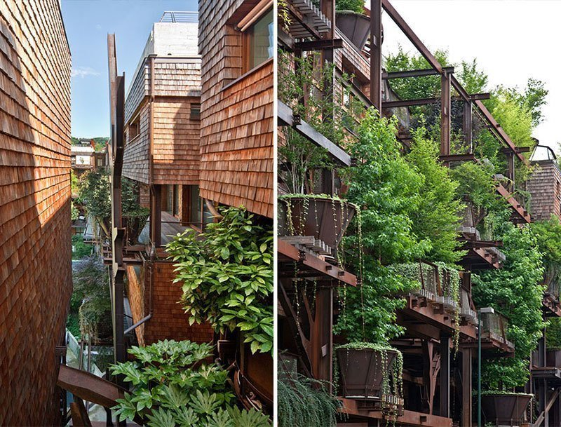 Urban Treehouse Green Design