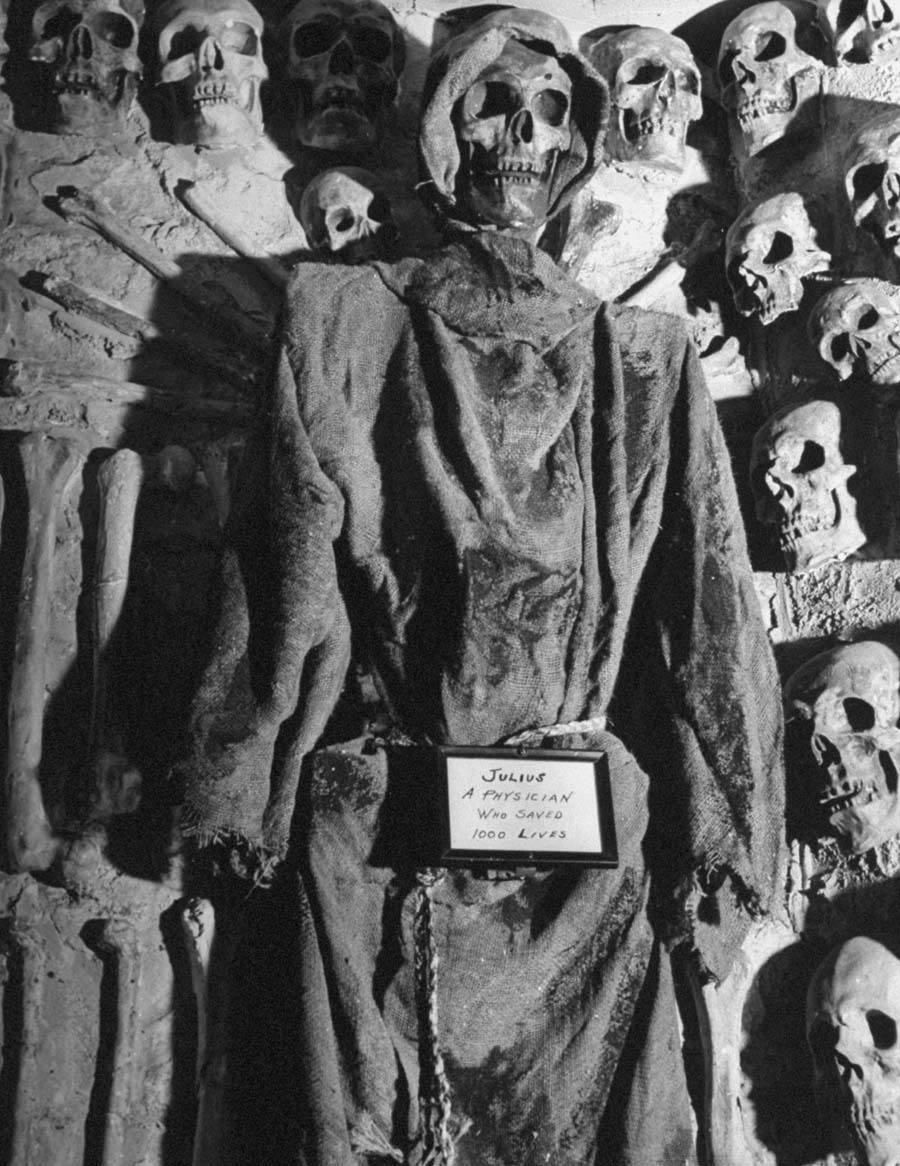 Catacombs Nightclub Julius