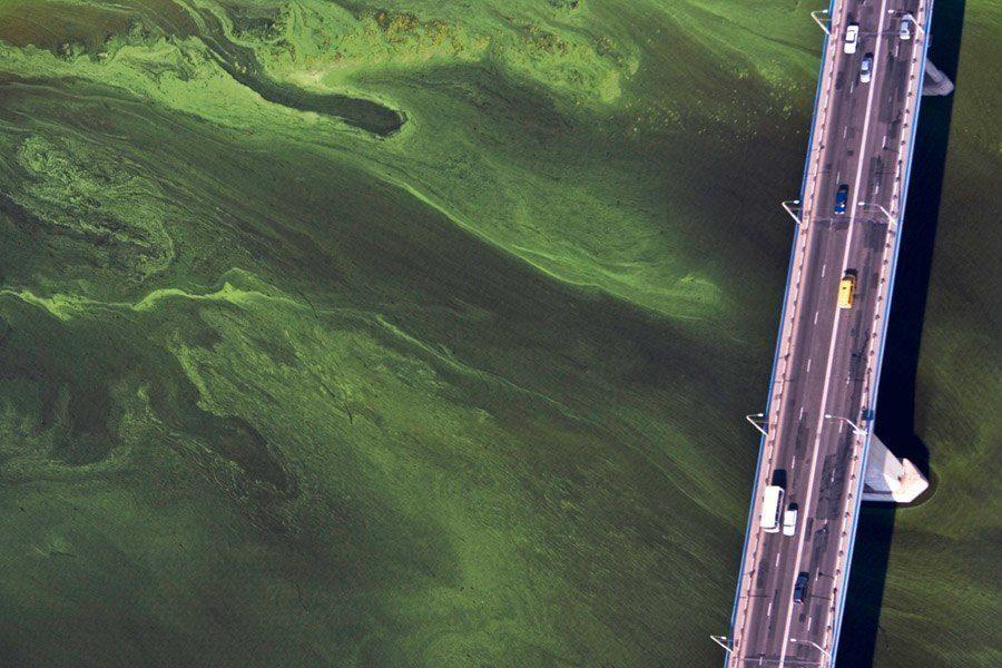 earth in crisis volga algae