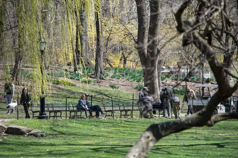 Couple below willows in NYC