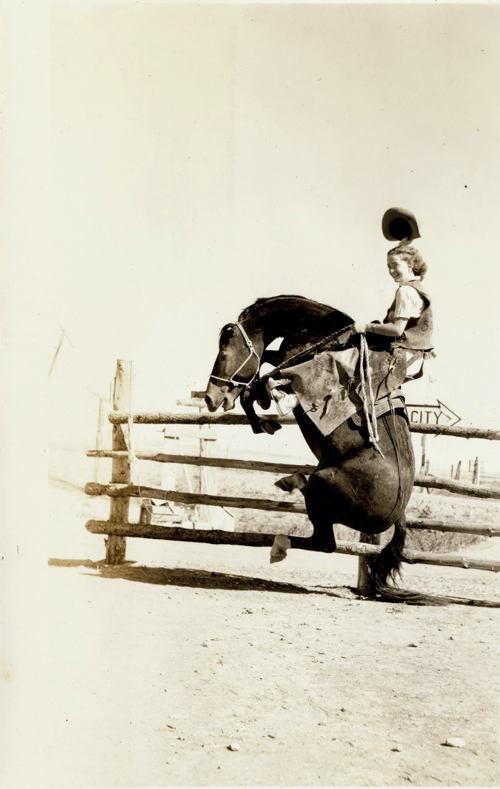 Dangerous Women Horse