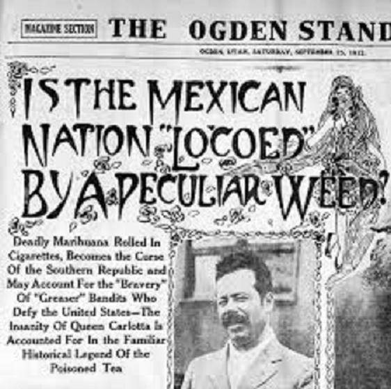 History Unchanged Weed