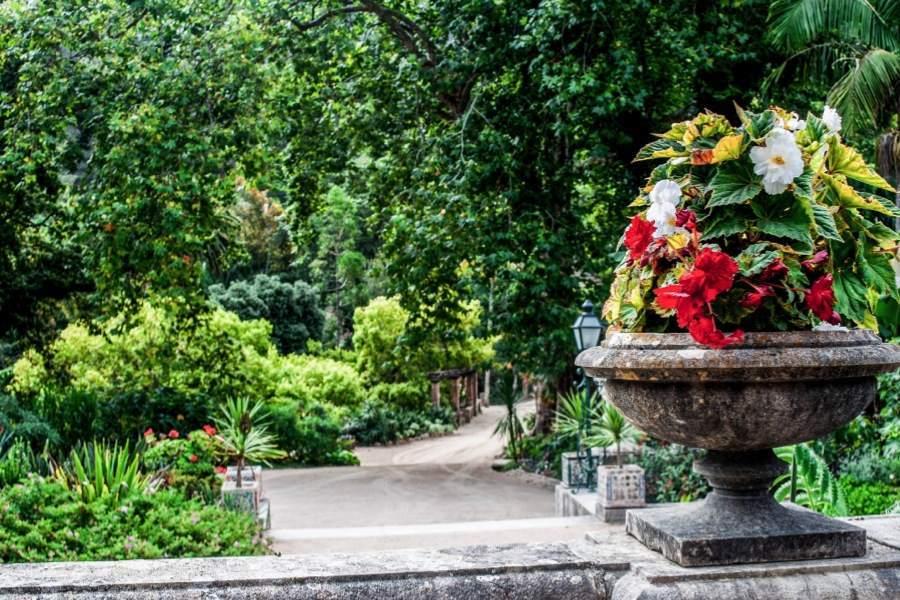 Monserrate Gardens