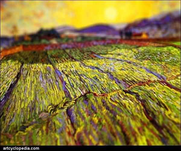 Van Gogh Tributes Field