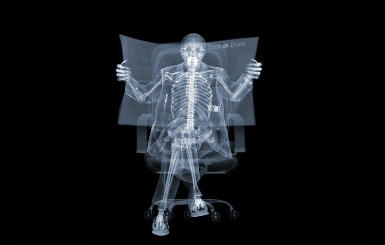 XRay Of Someone Reading