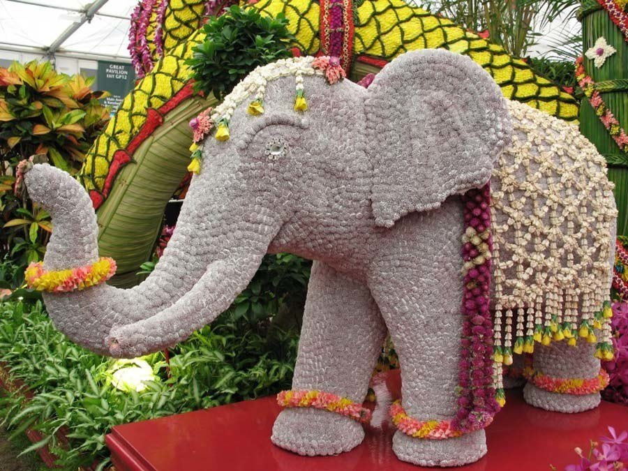 chelsea flower show elephant