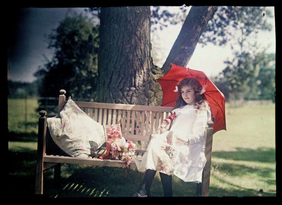 etheldreda laing autochrome iris bench