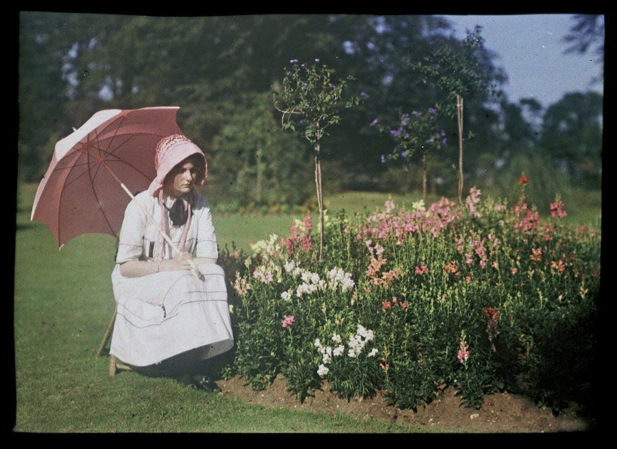 etheldreda laing autochrome janet wildflowers