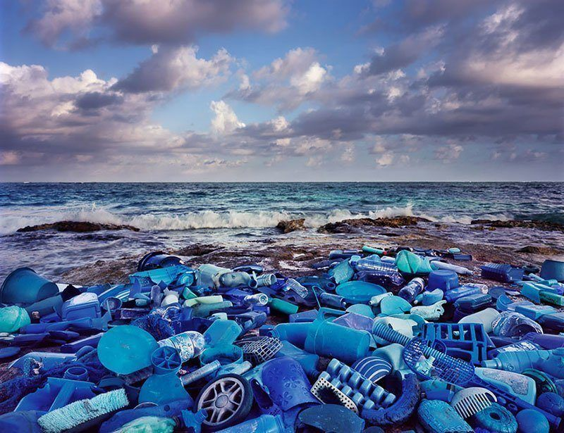 Ocean Pollution Into Art