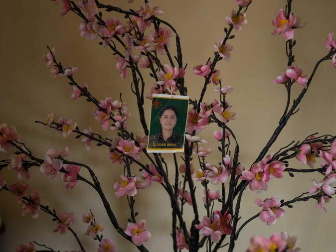 Cicek Tree