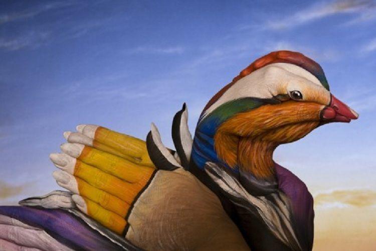 Guido Daniele Hand Art Duck